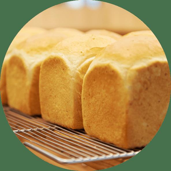 水神のパン